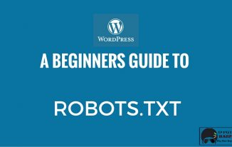 WordPress Robots.txt File – Beginner's Guide