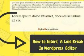 How to insert a line break in wordpress manually