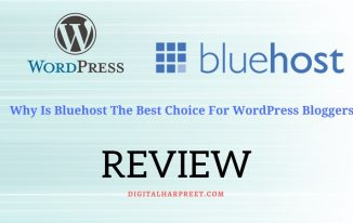 Bluehost Review: Why It's Best Choice For Newbie Bloggers?